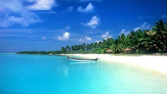 Пляж в индии 86