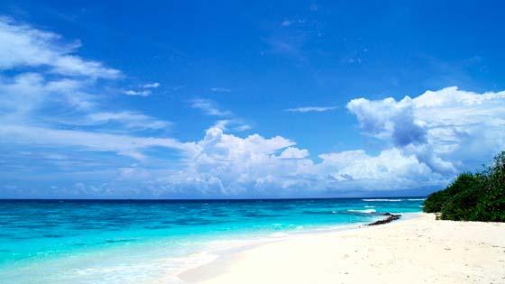 Отпуск на пляже