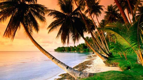 Фотогалерея пляжей