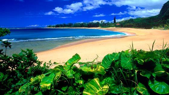 Фото пляжей мира