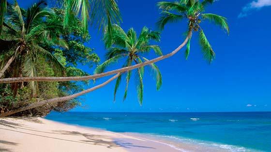 Фотографии пляжей