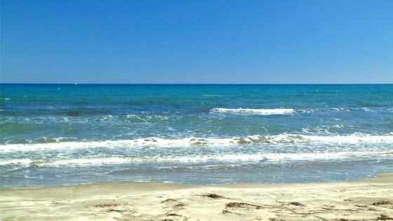 Ladies Mile Beach