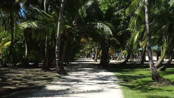 Лучшие пляжи мальдив
