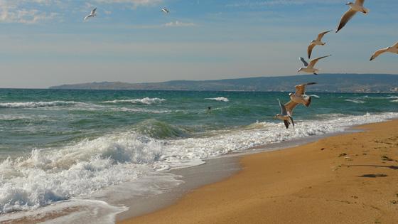 Золотой пляж Береговое